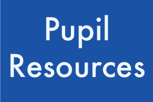 Pupil Resources button